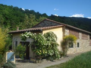 Il Cielo Bio - organic b&b - garden - kitchenette - Greve in Chianti vacation rentals