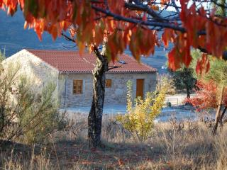 Charming 3 bedroom Cottage in Serra da Estrela - Serra da Estrela vacation rentals