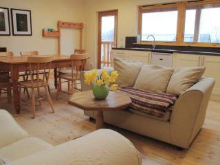 6 bedroom Lodge with Internet Access in Lampeter - Lampeter vacation rentals