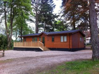 Perfect Lodge with Internet Access and Television - Birnam vacation rentals