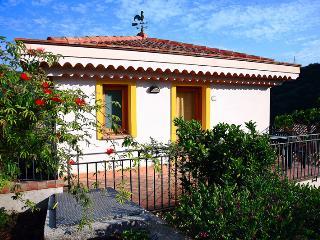 bilo3 (arancio, limone) - Messina vacation rentals