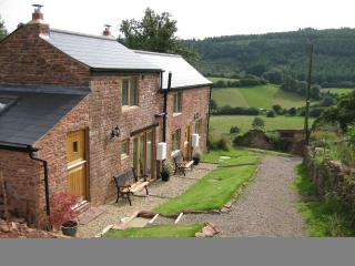 Romantic hideaway; stunning views and wood burner - Mitcheldean vacation rentals