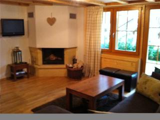 Cozy 2 bedroom Les Diablerets Condo with Internet Access - Les Diablerets vacation rentals