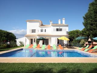 Villa Tenazinha II - PERFECT FOR LARGE GROUPS - Olhos de Agua vacation rentals
