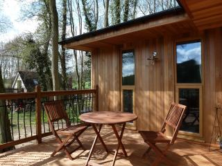 Nice Lodge with Internet Access and Television - Ledbury vacation rentals