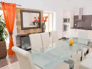 Beautiful Villa with Internet Access and Dishwasher - Figueiro dos Vinhos vacation rentals