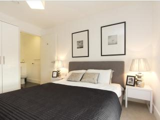 Fab 2bed Central London Zone 2 - London vacation rentals
