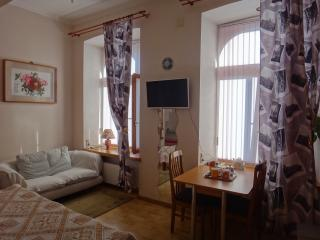 Comfortable Guest house with Internet Access and Dishwasher - Moscow vacation rentals
