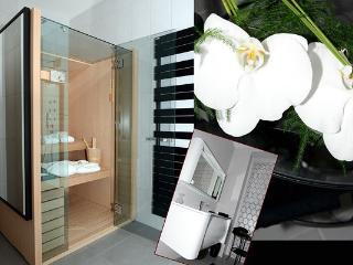Cozy 2 bedroom Gite in Arras - Arras vacation rentals