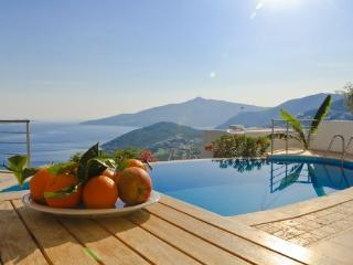 3 Bedroom Seaview Villa IPK (FREE CAR OR TRANSFER) - Kalkan vacation rentals
