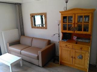 Cozy Araches-la-Frasse Studio rental with Internet Access - Araches-la-Frasse vacation rentals