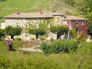 Bright 5 bedroom Brullioles Castle with Internet Access - Brullioles vacation rentals