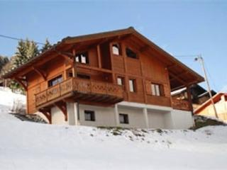 Mountain Xtra Chalet Hibou - Les Gets vacation rentals