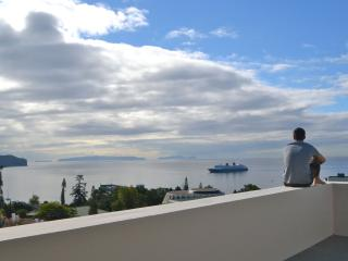 3 bedroom Penthouse in Funchal - Funchal vacation rentals