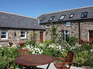 3 bedroom Cottage with Internet Access in St Cyrus - St Cyrus vacation rentals