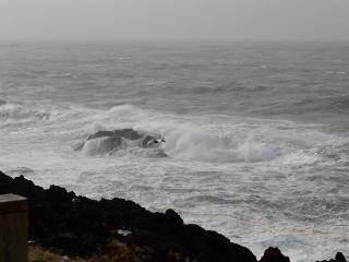 Whale Pointe - Depoe Bay vacation rentals