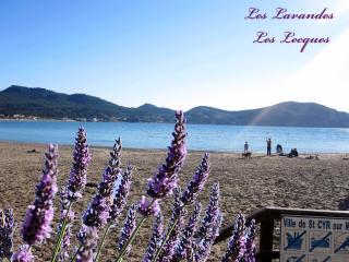 Duplex Résidence des Lavandes - Les Lecques vacation rentals