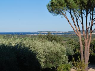 la bastide du pierredon - Saint-Tropez vacation rentals