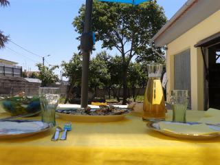 casa amarela - Esmoriz vacation rentals
