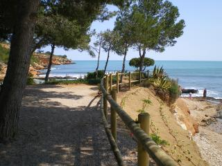 Gorgeous 1 bedroom Rasquera Finca with Short Breaks Allowed - Rasquera vacation rentals