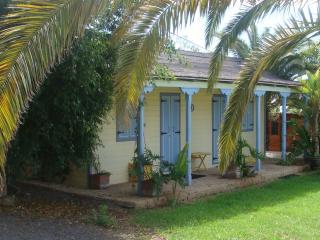 Colonial House, private garden and Pool** near Sea - Callao Salvaje vacation rentals