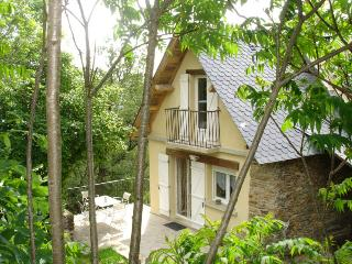 2 bedroom Cottage with Satellite Or Cable TV in Grand-Vabre - Grand-Vabre vacation rentals