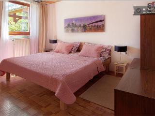 Dream Apartment  Brglez Bled * * * with 2 bedrooms - Bohinjska Bela vacation rentals