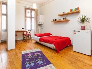 COSY & CENTRAL DUPLEX FLAT - Istanbul vacation rentals