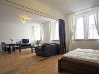2 BDR APARTMENT OLD TOWN SQUARE - Prague vacation rentals