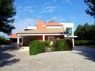 Bright 4 bedroom Bed and Breakfast in Ruvo Di Puglia with Internet Access - Ruvo Di Puglia vacation rentals