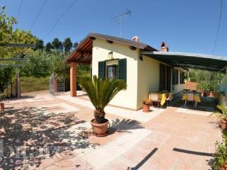 casa vacanze il ciliegio - Montecarlo vacation rentals