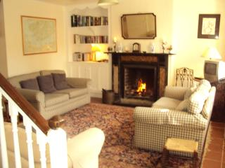 Comfortable House with Tennis Court and Satellite Or Cable TV in Castletownshend - Castletownshend vacation rentals