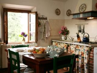 Agriturismo I Moricci-Frantoio - Fabbrica di Peccioli vacation rentals