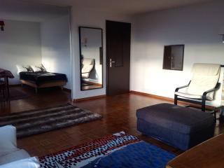 Esclusivo appartamento a Crans - Sierre vacation rentals
