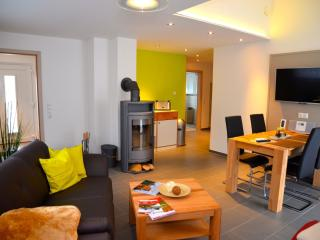 Cozy 2 bedroom Condo in Koenigstein - Koenigstein vacation rentals