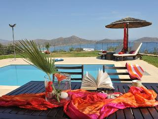 Wonderful Villa with A/C and Satellite Or Cable TV - Elounda vacation rentals