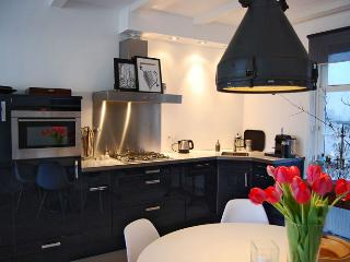 Le Petit Prince Apartment - Assendelft vacation rentals