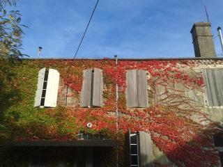 MANOIR DE BUROSSE OUEST FRANCE petite à l'étage - Eauze vacation rentals