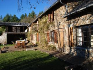 Pyrenees Gite Amazing Views Jacuzzi Games Room Heated Pool Perfect for Groups - Lannemezan vacation rentals