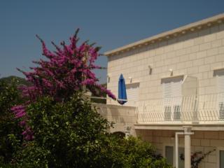 Apartmani Husanovic A1 - Mokosica vacation rentals
