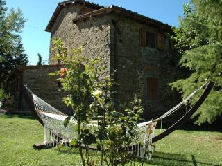 Sunny 6 bedroom Greve in Chianti B&B with Garden - Greve in Chianti vacation rentals