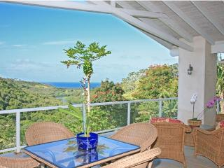 3 bedroom Villa with Deck in Kilauea - Kilauea vacation rentals
