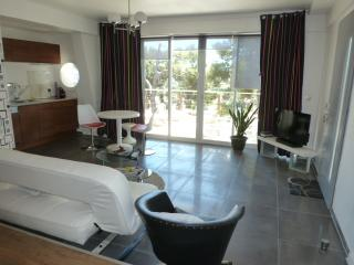 Nice Condo with Internet Access and Dishwasher - Ollioules vacation rentals