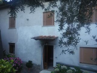 "Affitta Camera ""IN Sovaglia"" - Lucca vacation rentals"