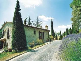 Beautiful setting for the perfect Tuscan vacation - Castel San Gimignano vacation rentals