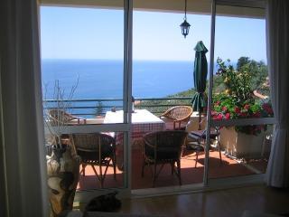Apartamento do Sol - Arco da Calheta vacation rentals