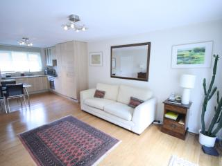 Lovely Condo with Internet Access and Television - Berkhamsted vacation rentals