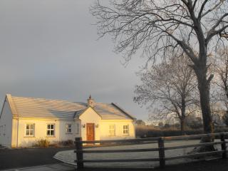 Cozy 3 bedroom Banagher Cottage with Internet Access - Banagher vacation rentals