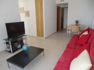 Beautiful 2 bedroom Penthouse in Mutxamel with Internet Access - Mutxamel vacation rentals
