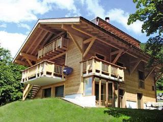 Ollon 31953 - Villars-sur-Ollon vacation rentals